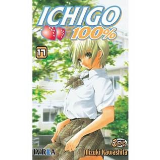 ICHIGO 17